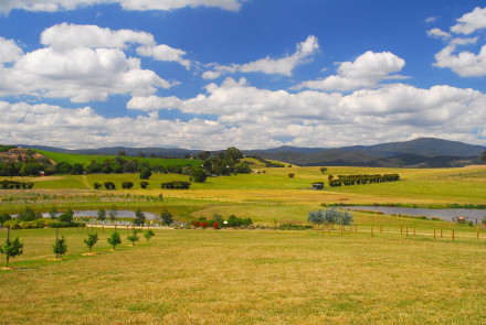 TOURISM YARRA VALLEY